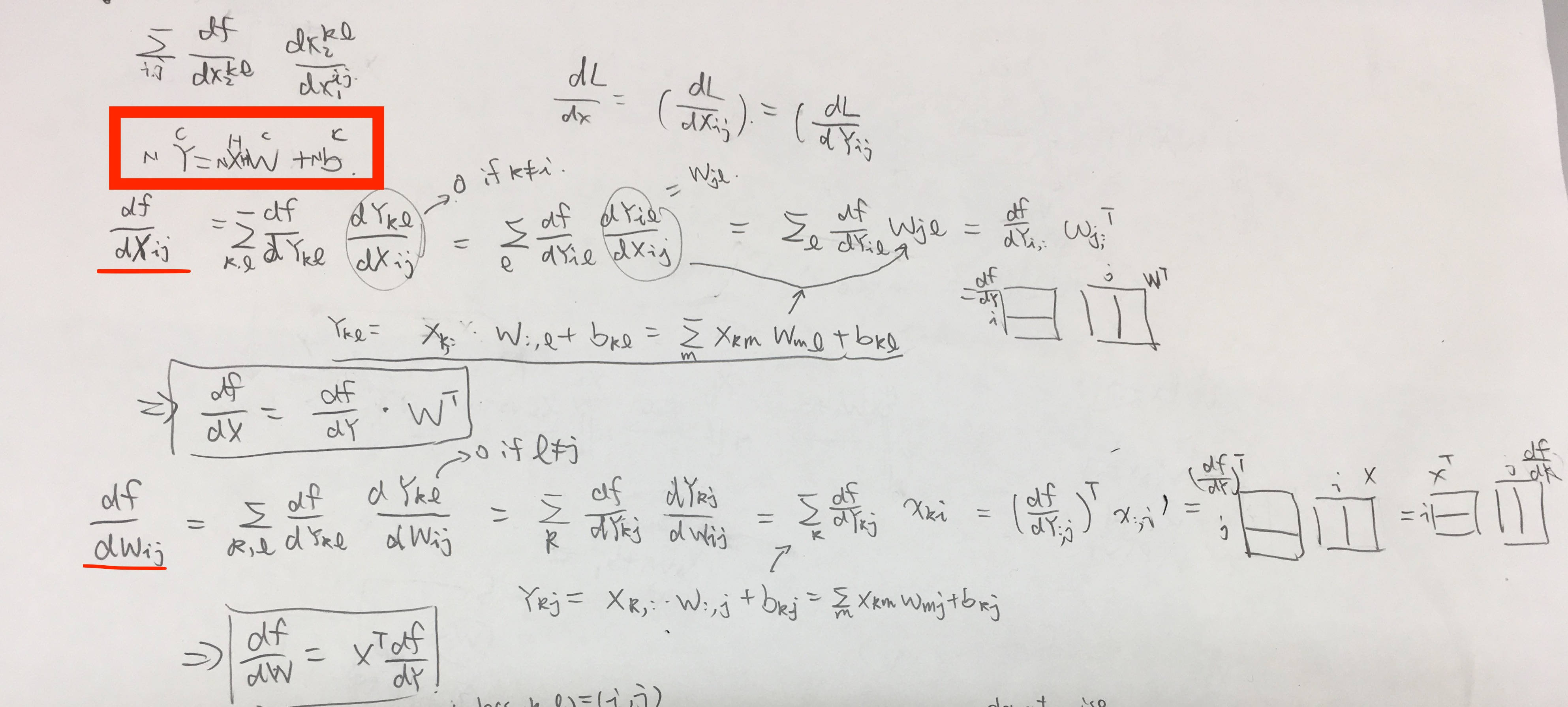 my calculation for backprop dYdX and dYdW